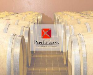azienda-vinicola-pepilignana.jpg
